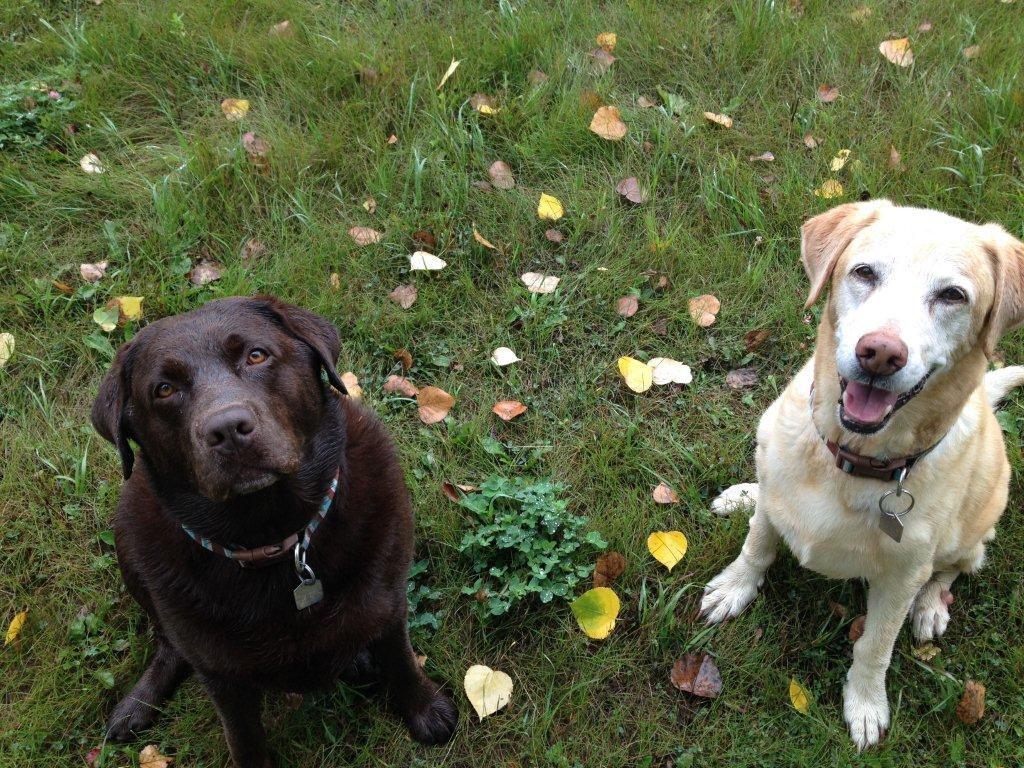 Khloe & Ellie Aug 22